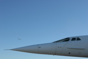 A Pricing Lesson from the Concorde image